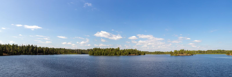 Lago forest en verano imagen de archivo