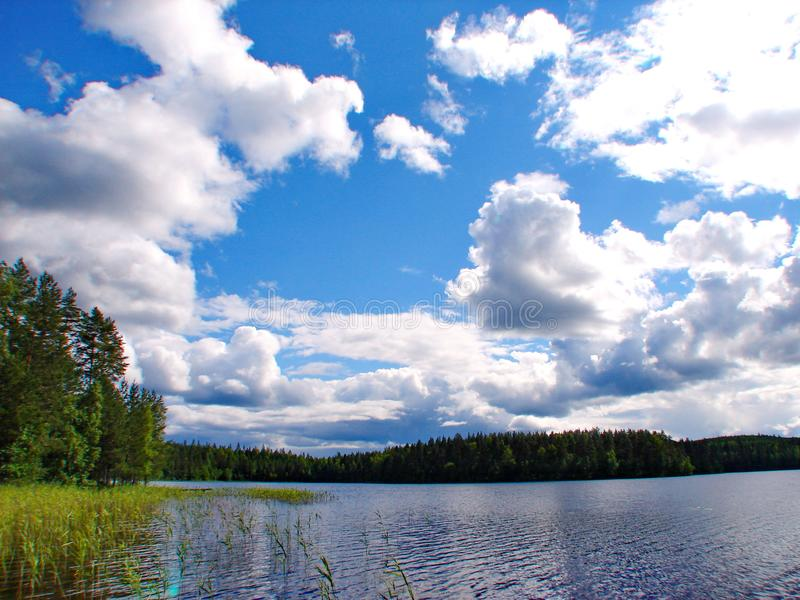 Lago forest, il cielo blu e nuvole bianche fotografia stock