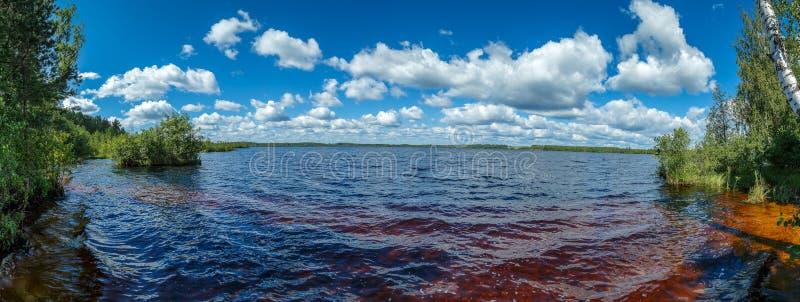 Lago forest un giorno di estate caldo immagini stock libere da diritti