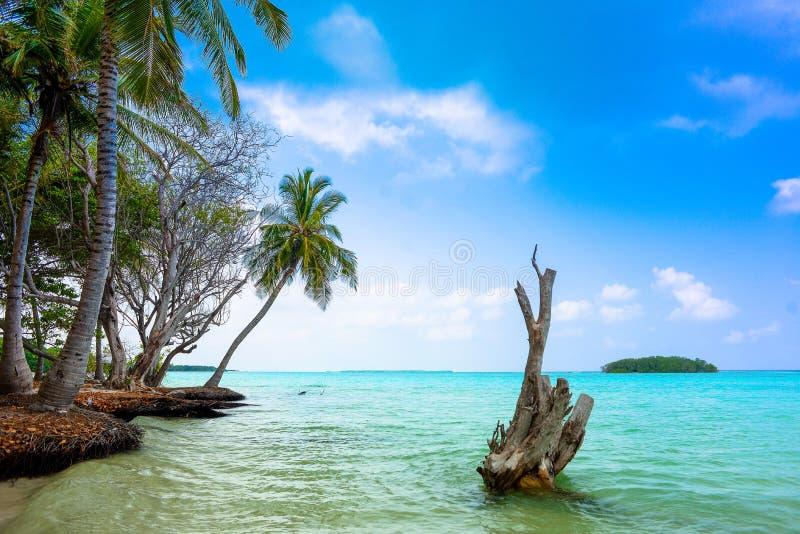 Lago Funadhoo, Maldivas imagens de stock