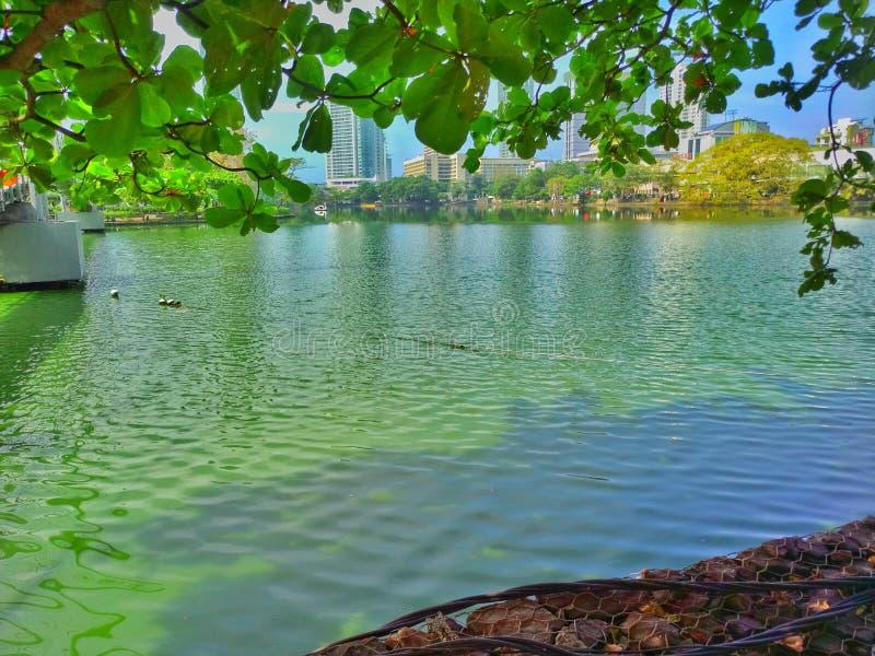 Lago Gangarama em Sri Lanka imagens de stock