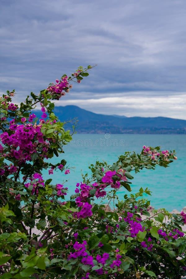 Lago Garda del castillo de Scaligero, Sirmione fotos de archivo libres de regalías