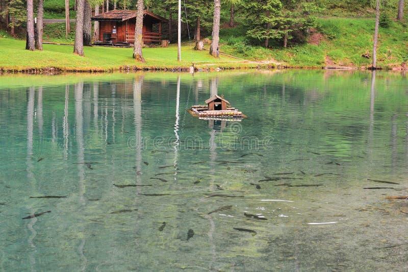 Lago Ghedina, casa pequena para patos e trutas fotografia de stock