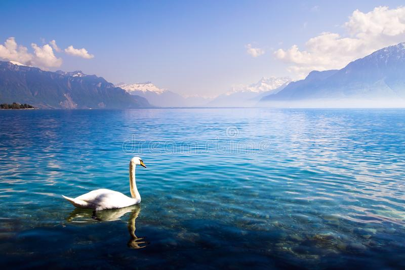 Lago Ginebra imagen de archivo