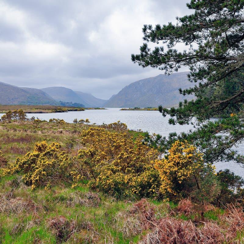 Lago Glenveagh imagem de stock royalty free