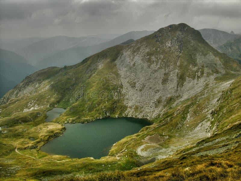 Lago goat en las montañas de Tomania fotos de archivo libres de regalías