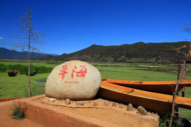Lago grass en el lago Lugu, China imagen de archivo libre de regalías