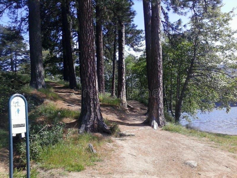 Lago Gregory fotografía de archivo libre de regalías