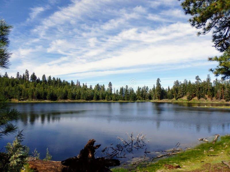 Lago heart fotografía de archivo libre de regalías