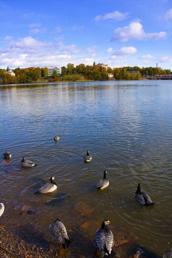 Lago helsinki imagens de stock