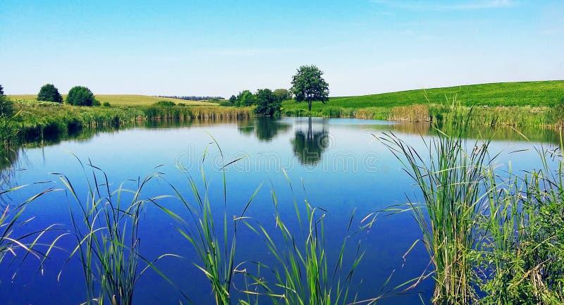 Lago hermoso contra el cielo azul y el verdor foto de archivo libre de regalías