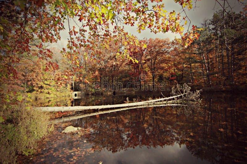 Lago hermoso de la caída fotografía de archivo libre de regalías