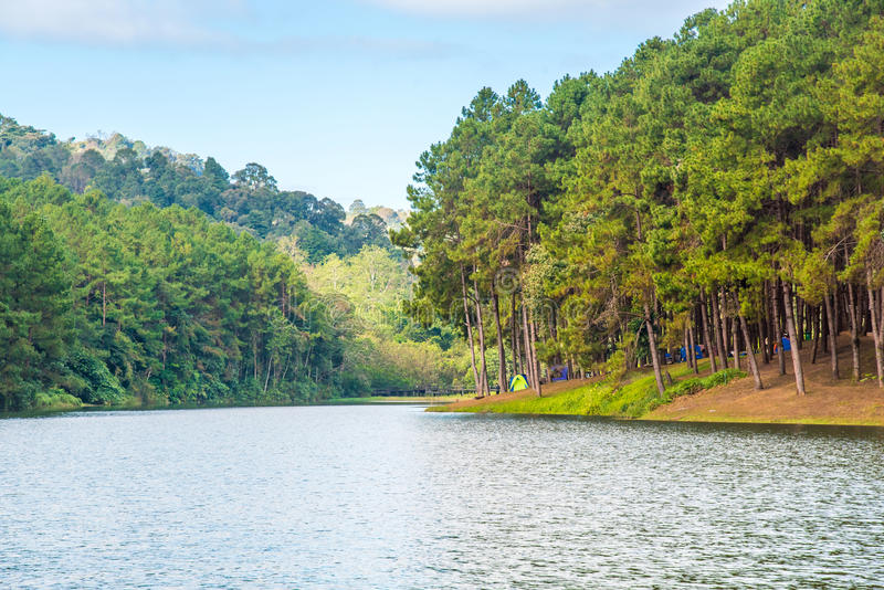Lago hermoso del bosque, Mae Hong Son, Pang Ung, Tailandia fotografía de archivo libre de regalías