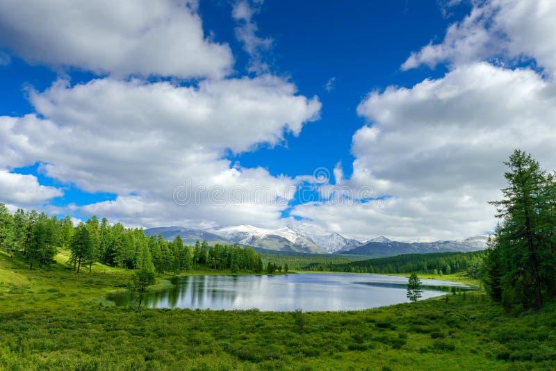 Lago hermoso en las montañas de Altai, Siberia, Rusia Lago salvaje de la montaña en el fondo de picos nevosos Paisaje del VERANO fotografía de archivo