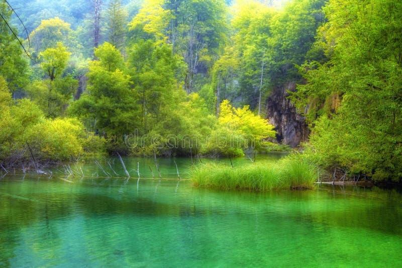 Lago hermoso en tiempo de primavera imagen de archivo libre de regalías