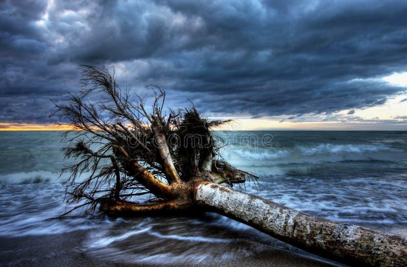 Lago Huron en la oscuridad fotografía de archivo