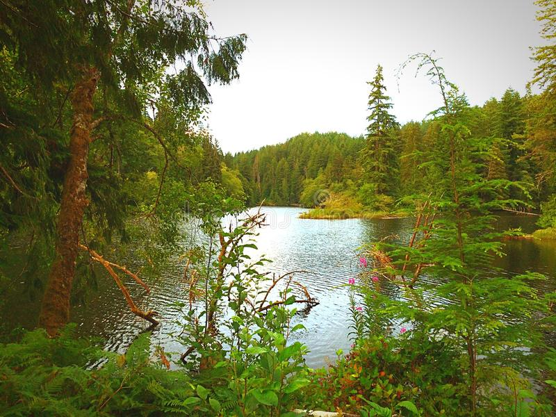 Lago icónico Sylvia fotos de archivo