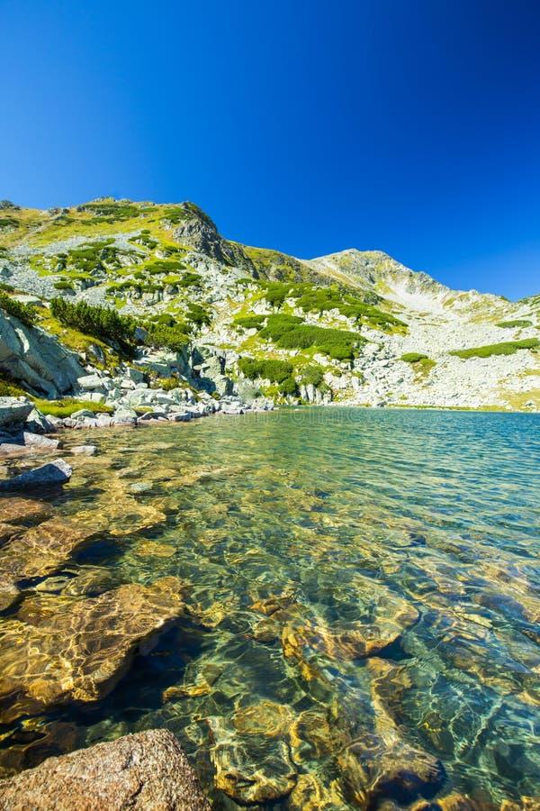 Lago incontaminato del ghiacciaio nelle alpi immagine stock libera da diritti