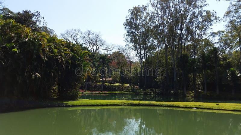 Lago a Inhotim - Belo Horizonte - Minas Gerais immagine stock