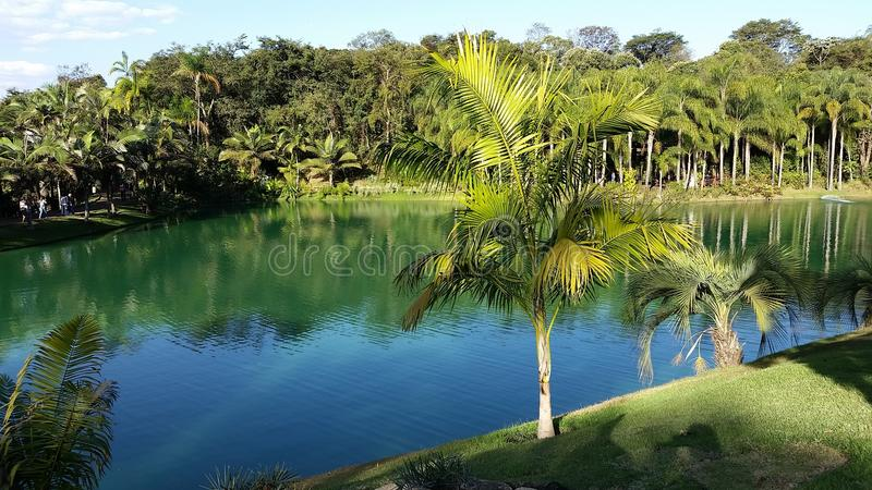 Lago a Inhotim - Belo Horizonte - Minas Gerais fotografia stock libera da diritti