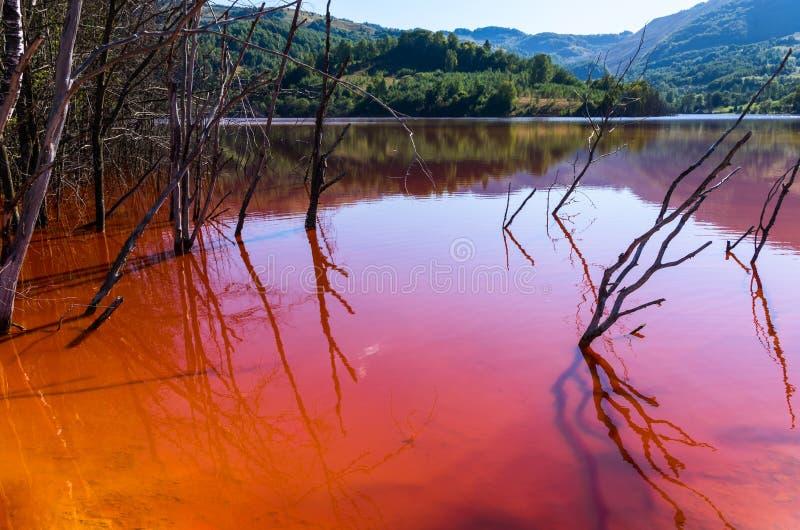 Lago inquinante rosso immagini stock