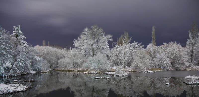 Lago In Inverno Fotografia Stock Libera da Diritti