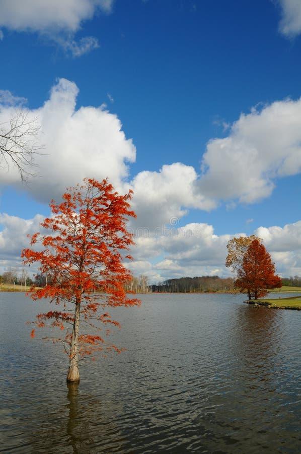 Lago Jacobson immagine stock libera da diritti