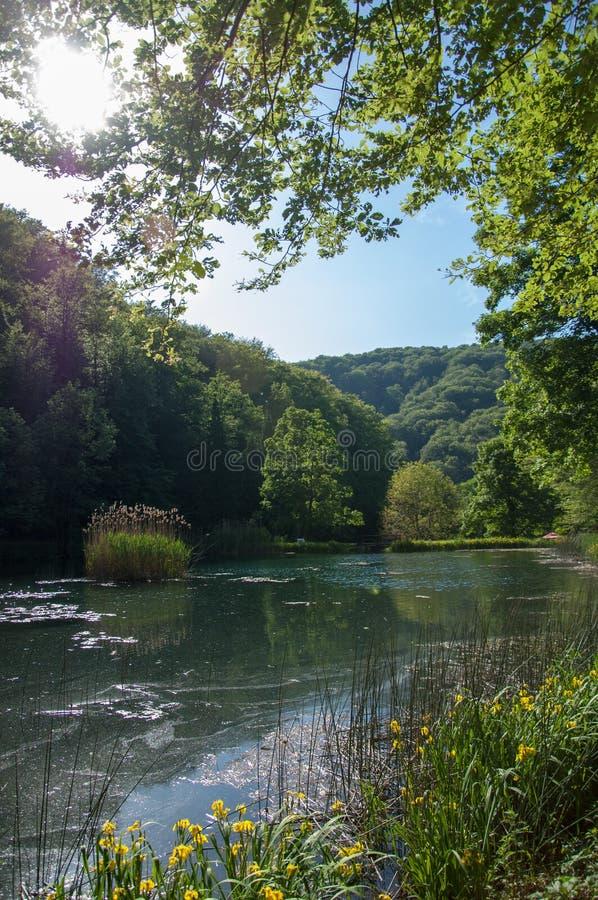 Lago Jankovac em Forest Park Jankovac, parque natural Papuk fotos de stock