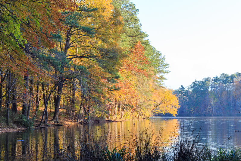 Lago Johnson en Raleigh, NC durante temporada de otoño fotos de archivo