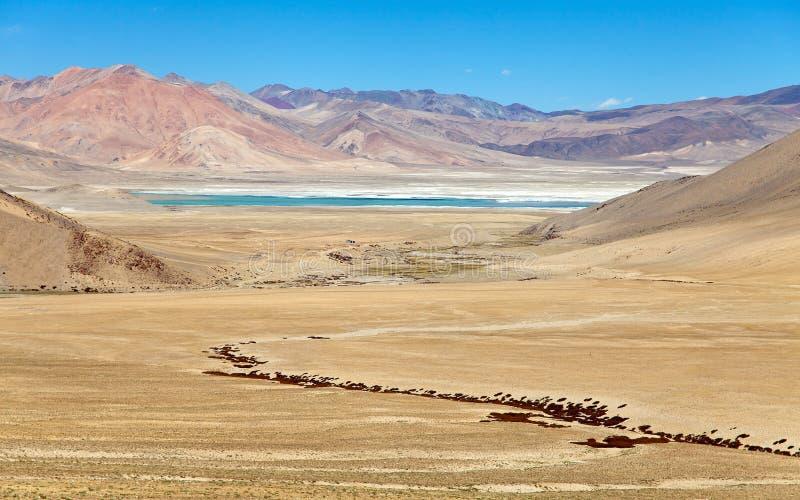 Lago Kar o TSO Kar cerca del lago tso Moriri, valle de Rupshu imagen de archivo