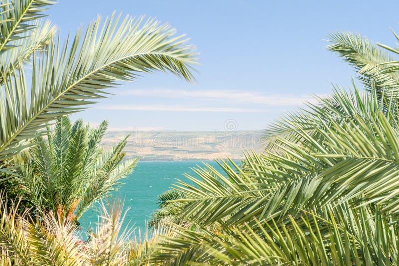 Lago Kinneret o mar de Galilea en el marco de las frondas de la palma imágenes de archivo libres de regalías
