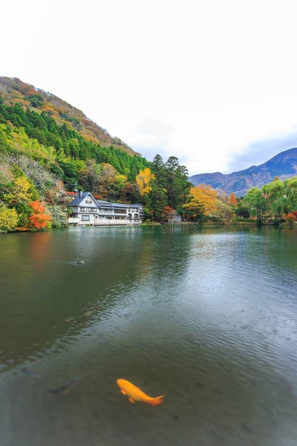 Lago Kinrinko en Yufuin, Kyushu, Japón imagen de archivo