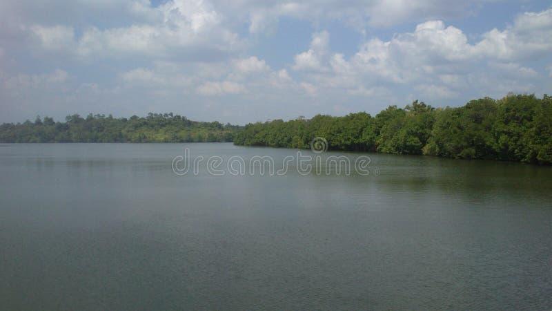 Lago Koggala en el senior Llanka imagenes de archivo
