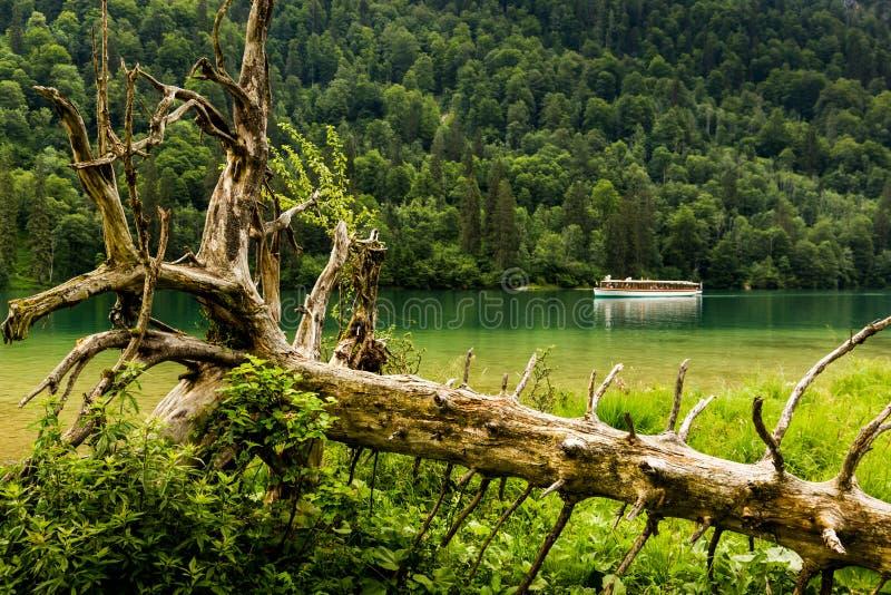 Lago Konigssee, conhecido como o ` o lago o mais profundo e o mais limpo de s de Alemanha imagens de stock royalty free