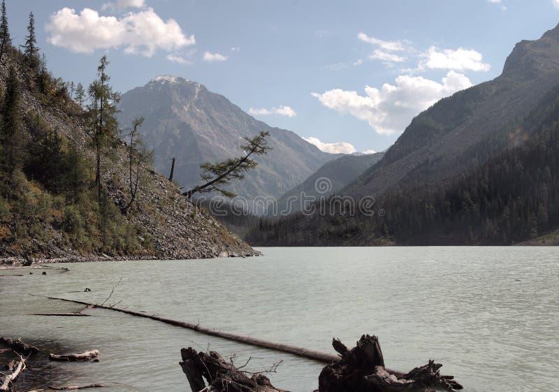 Lago Kucherlinskoe fotografia de stock royalty free