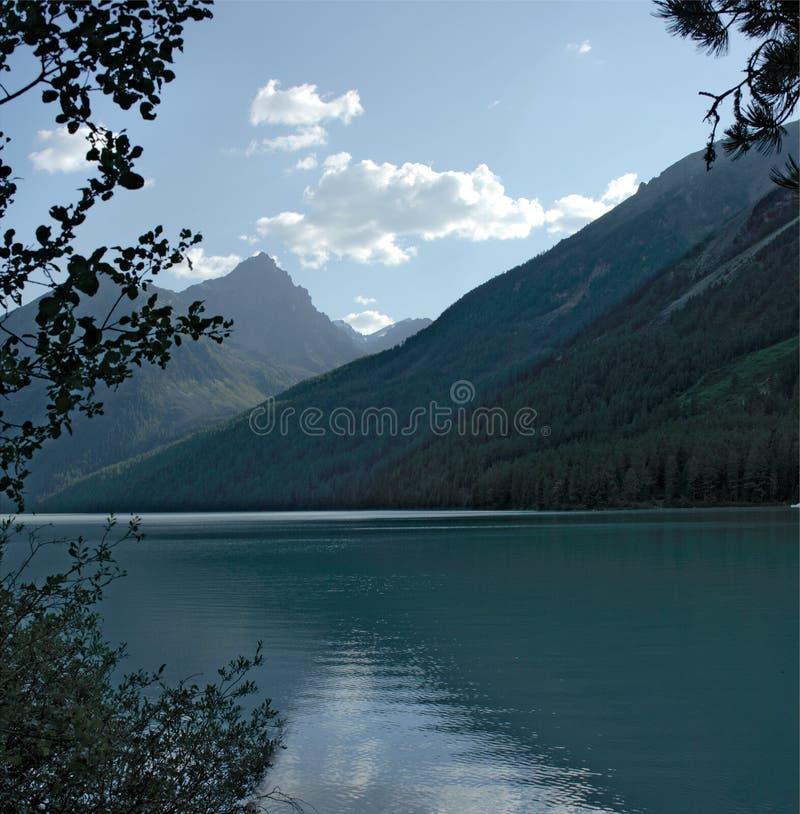 Lago Kucherlinskoe fotos de stock royalty free
