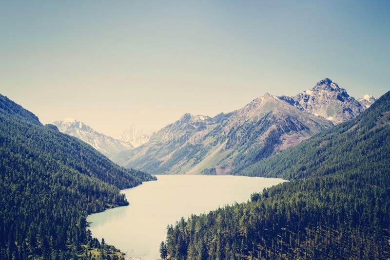 Lago Kucherlinskoe, ponto de vista largo, Altai, Federação Russa Paisagem bonita sem povos Lago verde bonito da montanha fotografia de stock