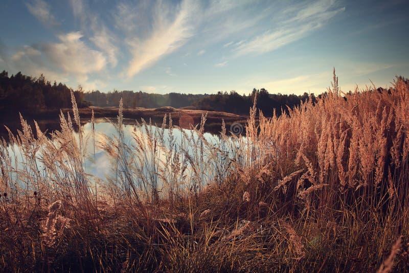 Lago landscape imagens de stock