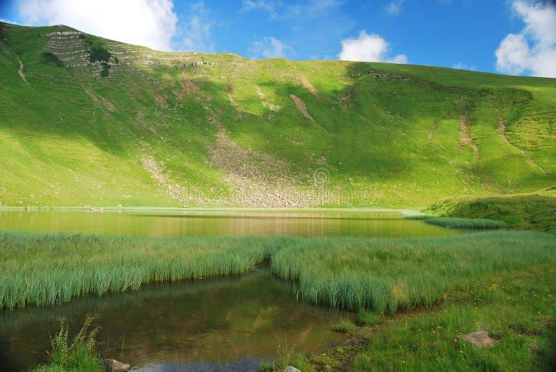 Lago Lednekovoe in Carpathians immagine stock