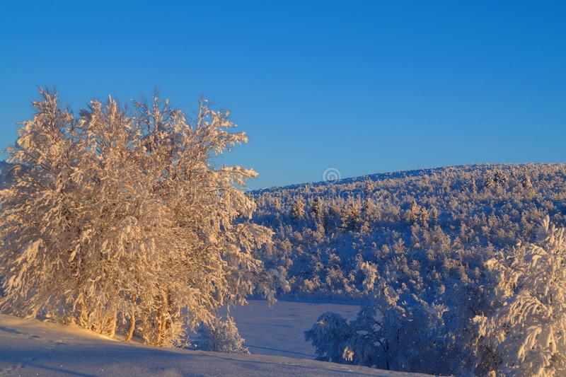 Lago Leppäjärvi e dia de inverno fotos de stock