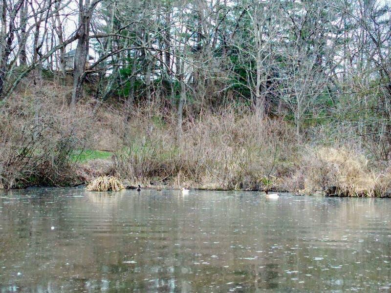 Lago Logan fotos de stock royalty free