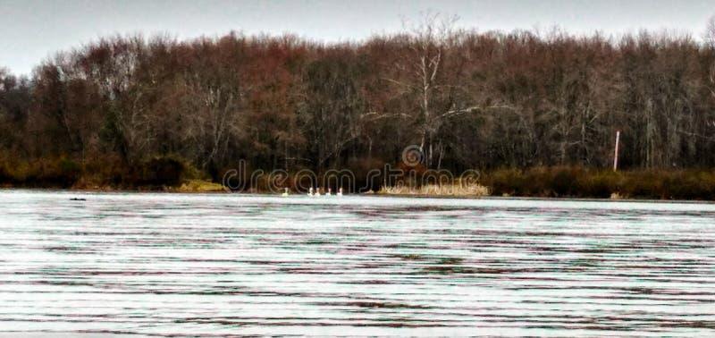 Lago Logan imagens de stock