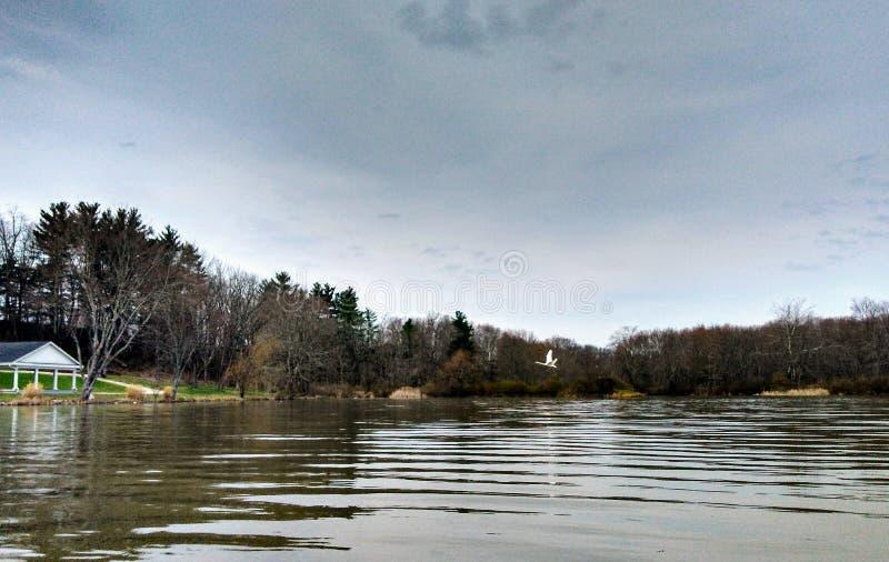 Lago Logan imagem de stock royalty free