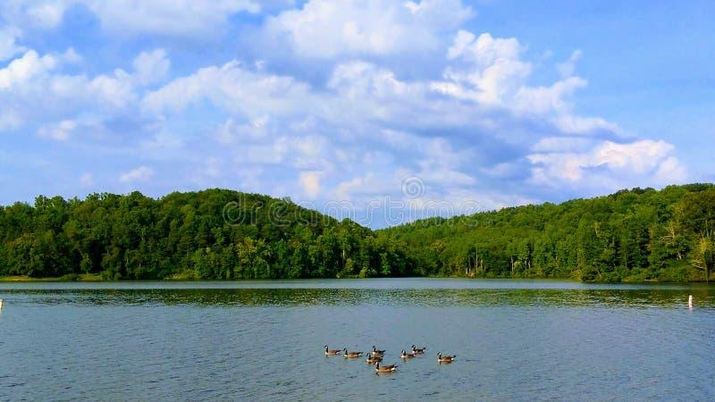 Lago Logan fotos de stock