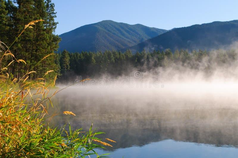 Lago Loon BC immagine stock libera da diritti
