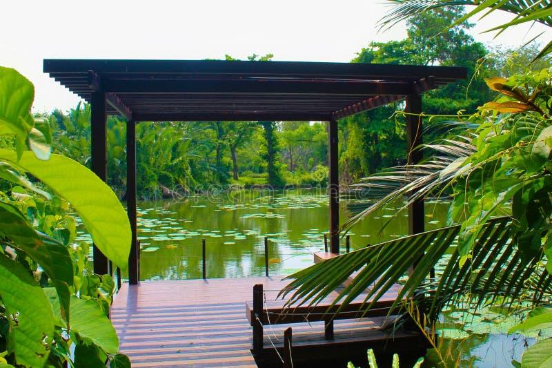 Lago Lumpini al parco di Lumpini, Tailandia fotografia stock