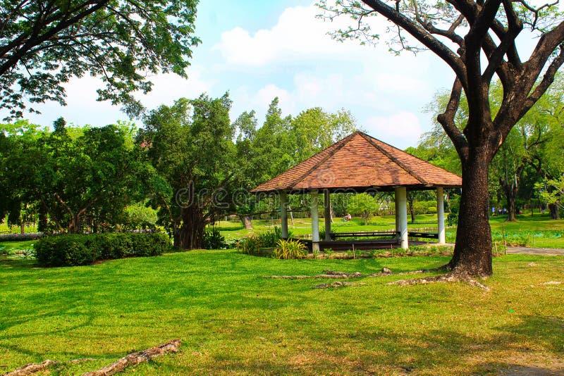 Lago Lumpini en el parque de Lumpini, Tailandia imagen de archivo