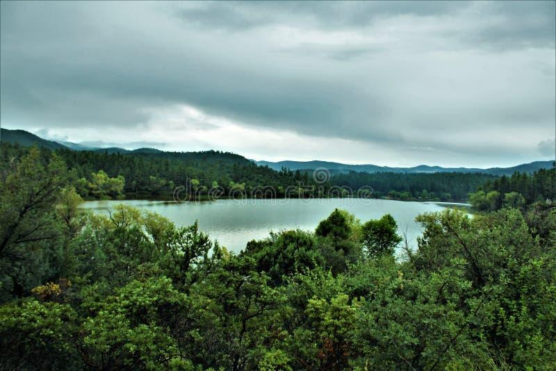 Lago lynx, distrito da guarda florestal de Bradshaw, Prescott National Forest, estado do Arizona, Estados Unidos imagem de stock