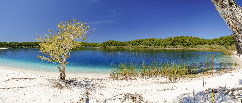 Lago MacKenzie fotos de stock