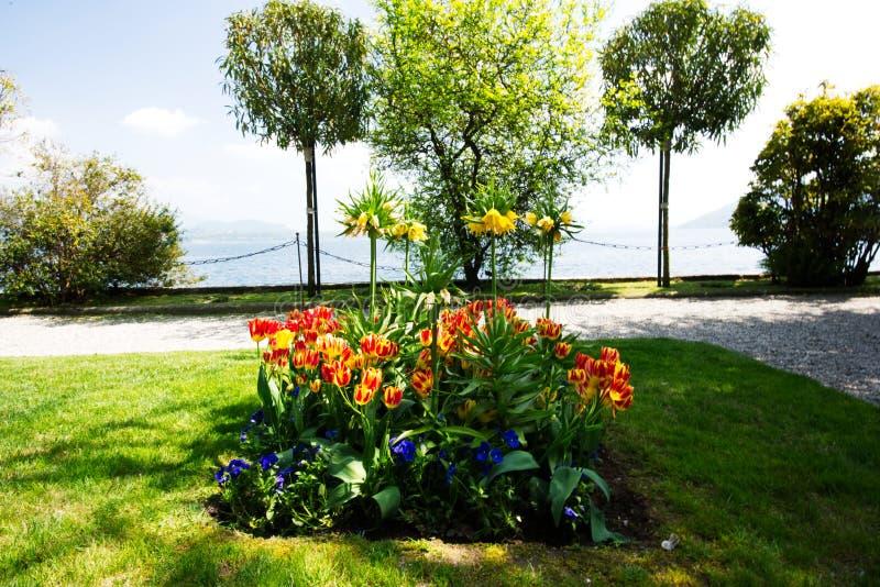 Lago Maggiore, lago italiano fotos de stock royalty free
